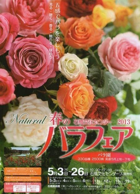 rose fair450.jpg